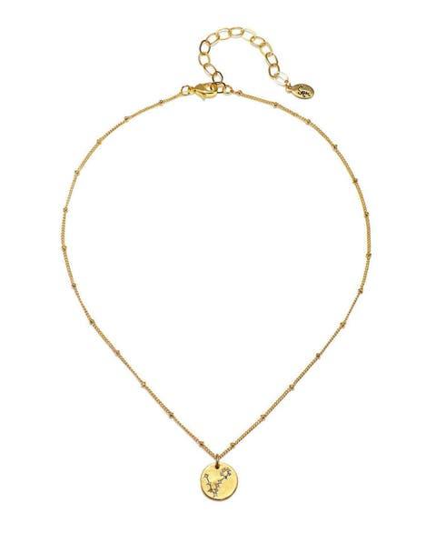sequin pisces stellina necklace