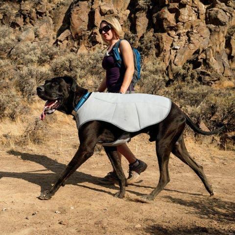 Ruffwear Swamp Cooler for Dogs