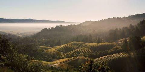 Sterling Vineyards — Calistoga
