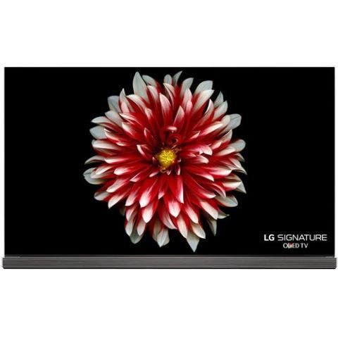 Flowering plant, Flower, Gerbera, Dahlia, Red, Plant, Chrysanths, barberton daisy, Petal, Daisy family,