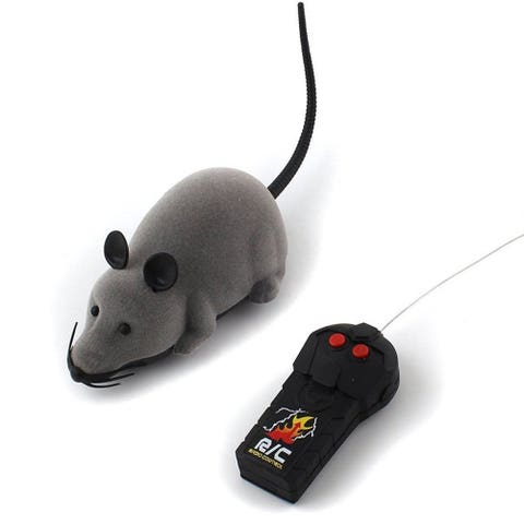 Rat, Mouse, Mouse, Muridae, Cat toy, Muroidea, Input device, Electronic device, Technology, Toy,