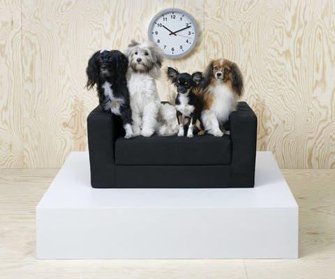 IKEA lurvig collezione per cani e gatti 1