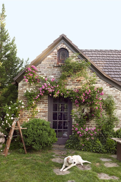 House, Property, Home, Cottage, Building, Tree, Spring, Architecture, Rural area, Shrub,