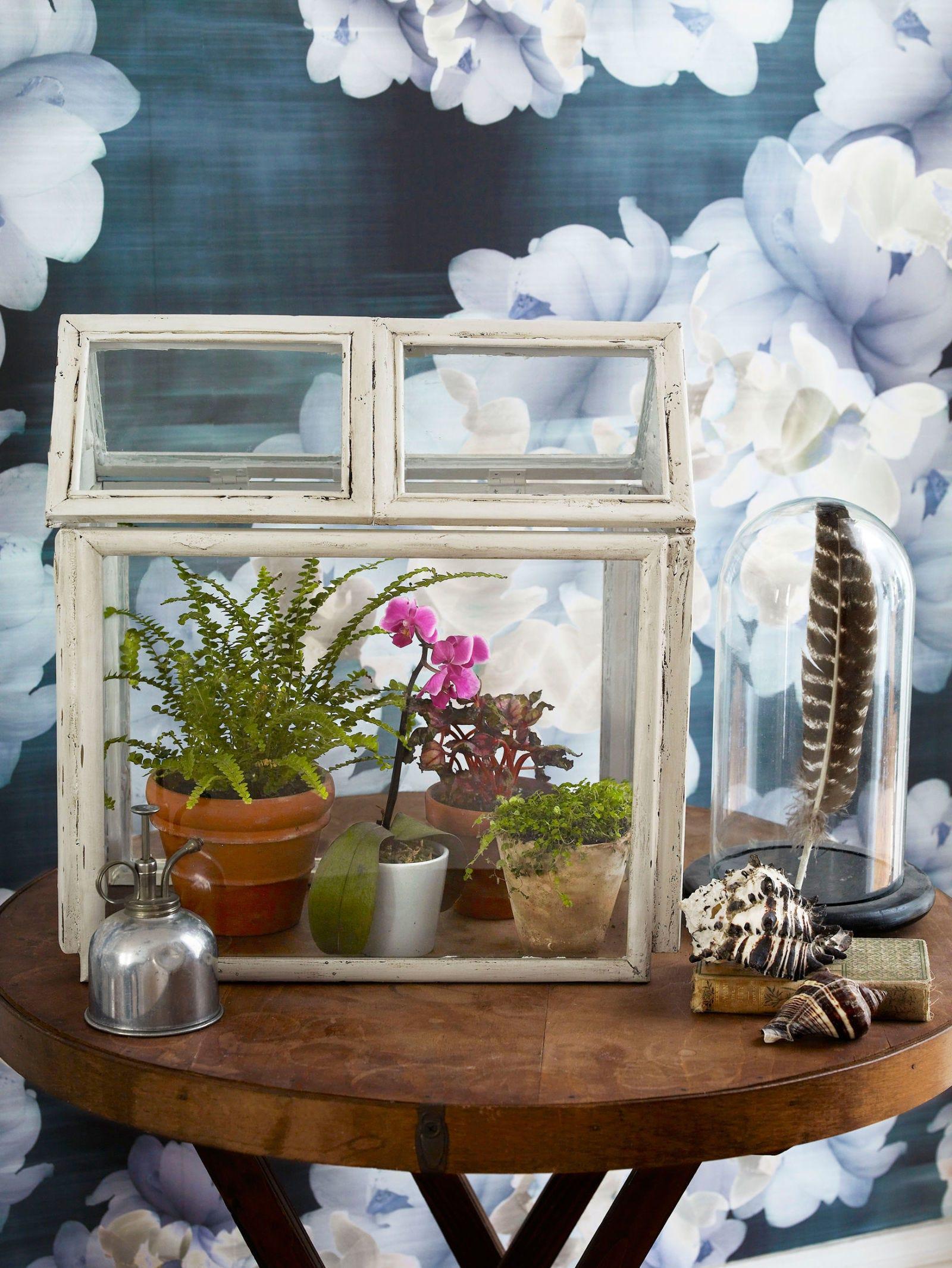 Blue, Flower, Petal, Flowerpot, Interior design, Table, Art, Still life photography, Vase, Paint,