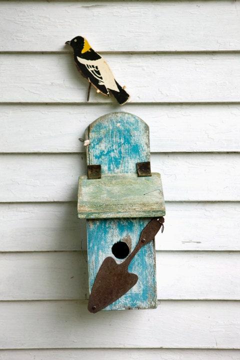 Wood, Beak, Bird, Teal, Turquoise, Birdhouse, Feather, Birdhouse, Siding, Pet supply,