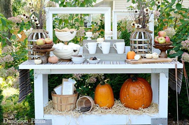 Plant, Squash, Calabaza, Table, Vegetable, Natural foods, Produce, Pumpkin, Orange, Flowerpot,