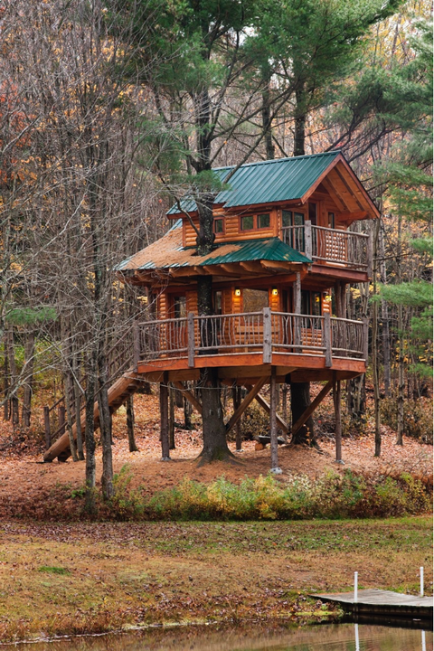 Wood, Property, House, Tree, Building, Home, Woody plant, Real estate, Log cabin, Rural area,