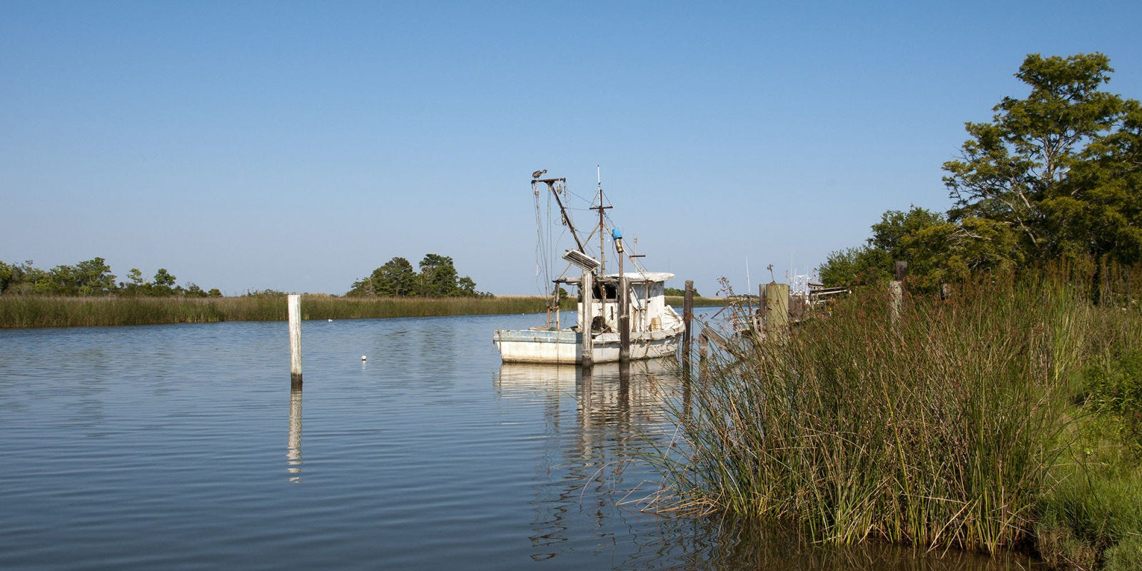 Water, Natural environment, Waterway, River, Bayou, Vehicle, Boat, Water resources, Tree, Bank,