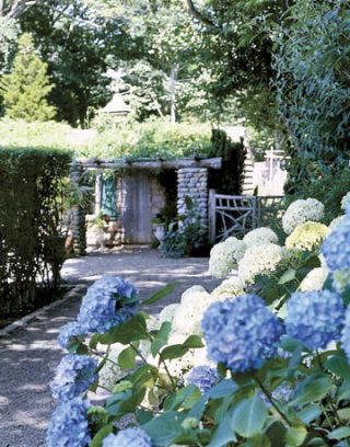 flower lined path to a shed