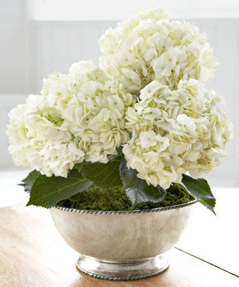 white flowers in silver bowl