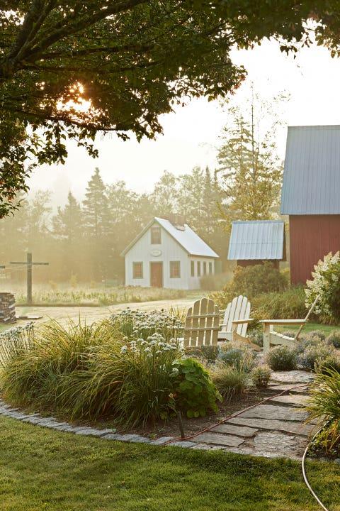 Plant, House, Tree, Leaf, Land lot, Garden, Home, Shrub, Real estate, Rural area,