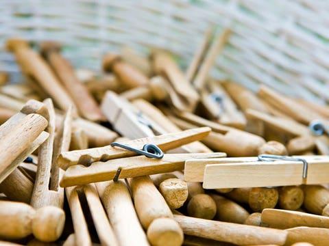 Match, Wood, Plant,