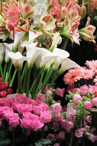 Flower arrangement classes