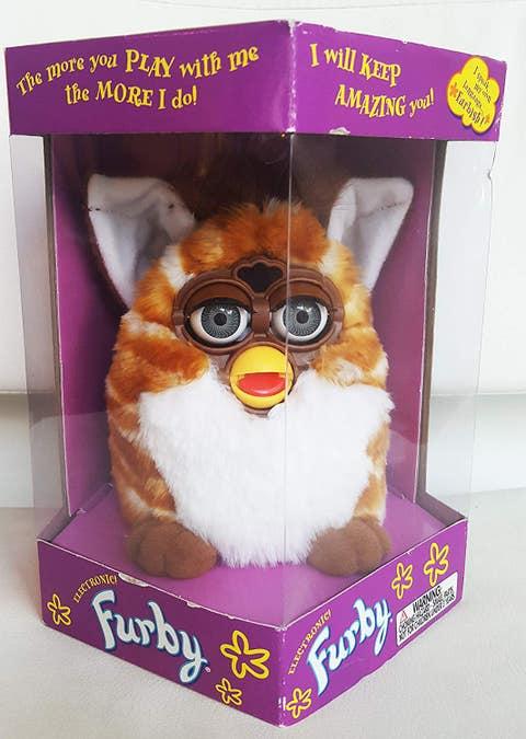 Stuffed toy, Plush, Toy, Canidae, Cat, Photo caption,