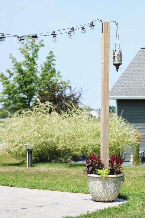 backyard string lights potted plant base