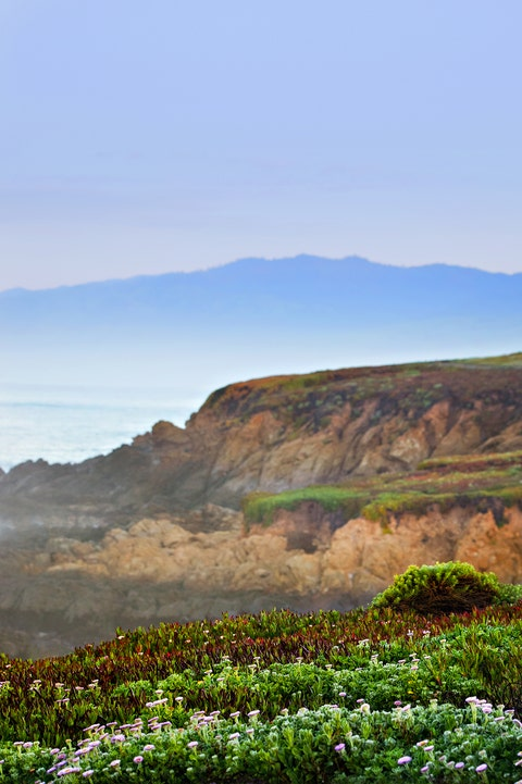 beach towns for fall vacation sea ranch california