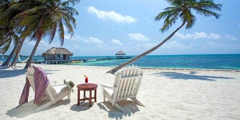 Vacation, Tropics, Beach, Tree, Palm tree, Caribbean, Arecales, Ocean, Sky, Shore,