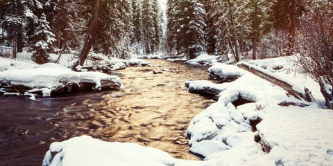 Snow, Winter, Nature, Natural landscape, Water, Tree, Wilderness, Stream, Sky, Freezing,