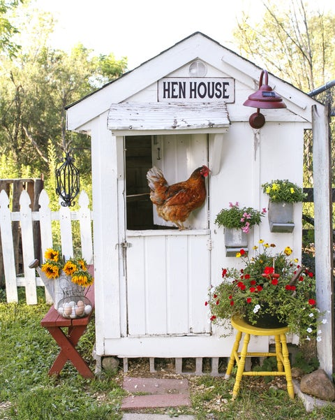 A White Farmhouse Style Chicken Coop