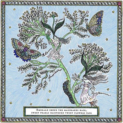 Plant, Botany, Flower, Pedicel, Wildflower, Flowering plant,