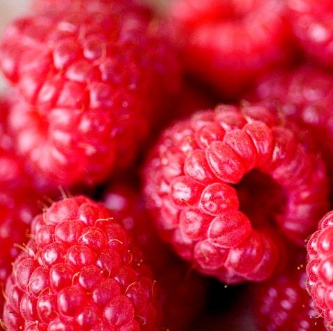 raspberries at campo de' fiori market