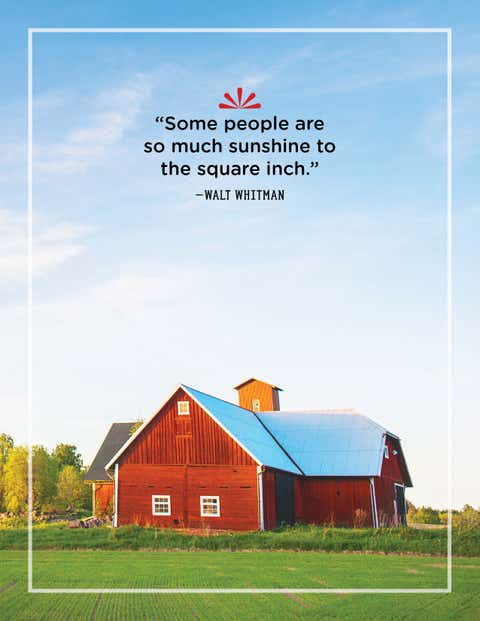 walt whitman quote about sunshine