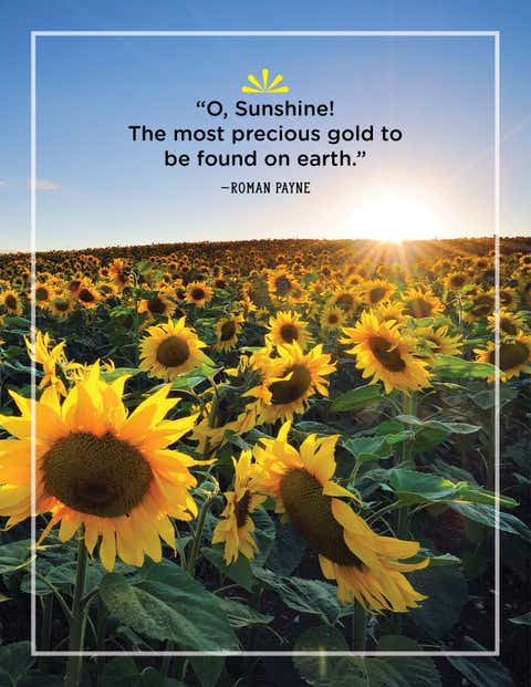 roman payne quote about sunshine