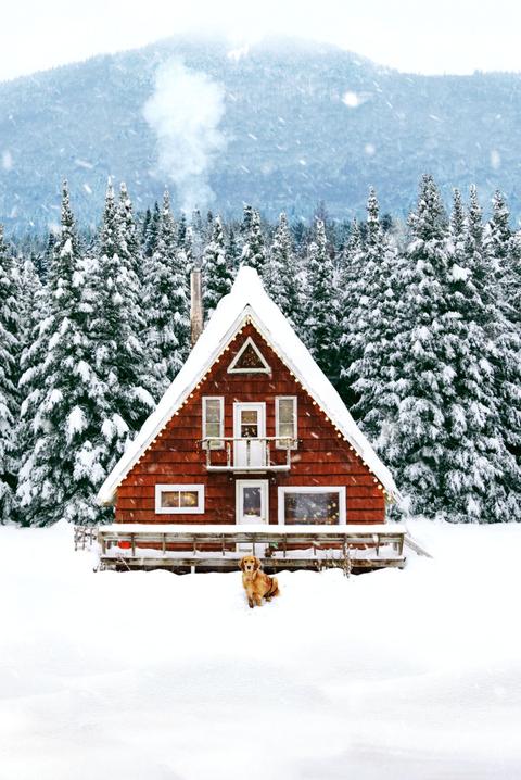 tiny houses snow cottage