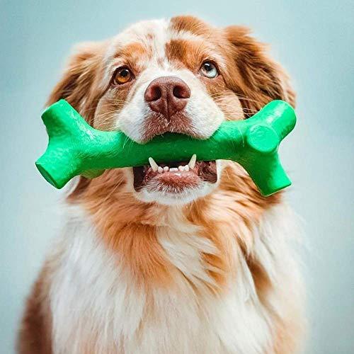 Pet Qwerks BarkBone Mint Flavor Dental Breath Stick Dog Chew Toy