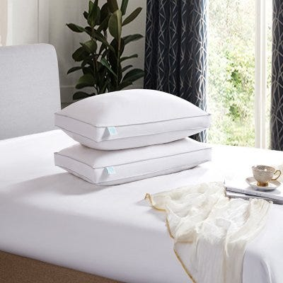 240 Thread Count White Feather and Down Pillow (2-pack)