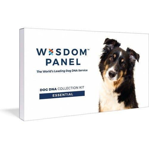Essential Dog DNA Test