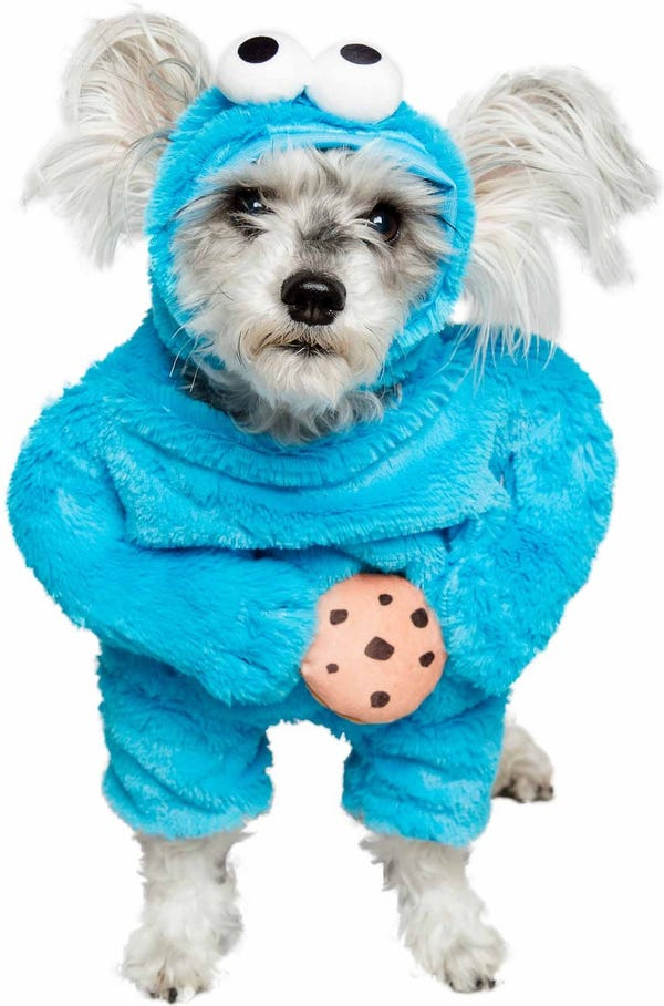 Pet Krewe Sesame Street Cookie Monster Dog & Cat Costume