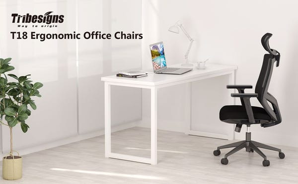 Tribesigns T18 Ergonomic Adjustable Office Chair with Lumbar Support