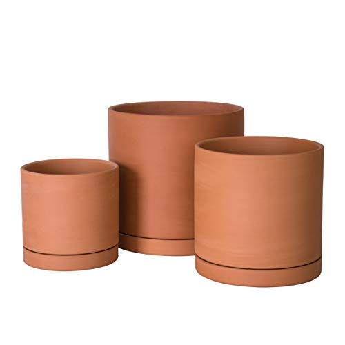 Terracotta Pot with Drainage Hole and Saucer, Round Cylinder Planter Pot
