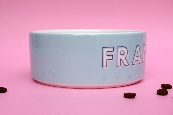 Dog Bowl: Custom with Your Pet's Name