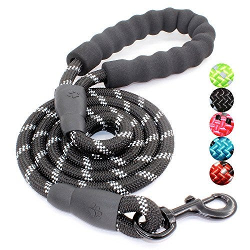 BAAPET 5 FT Strong Dog Leash with Comfortable Padded Handle