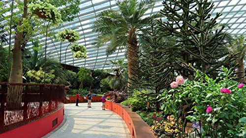 Virtually tour the Gardens by the Bay in Singapore