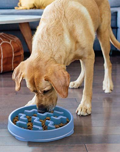 Outward Hound Fun Feeder Slo-Bowl Healthy Slow Feeding Dog Bowl, Large, Blue