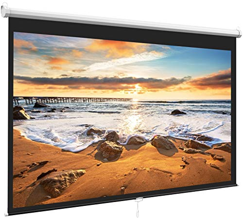 100 Inch 16:9 - Auto-Locking Portable Projection Screen