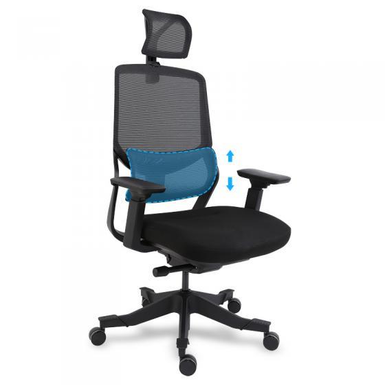 Soutine Ergonomic Office Chair: OC10B