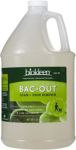 Biokleen Bac-Out Natural Enzyme Stain and Odor Remover