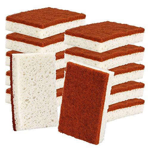 Natural Plant Based Scrub Sponge 12 Pack