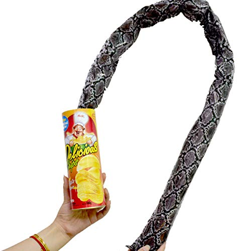 The Potato Chip Snake Can