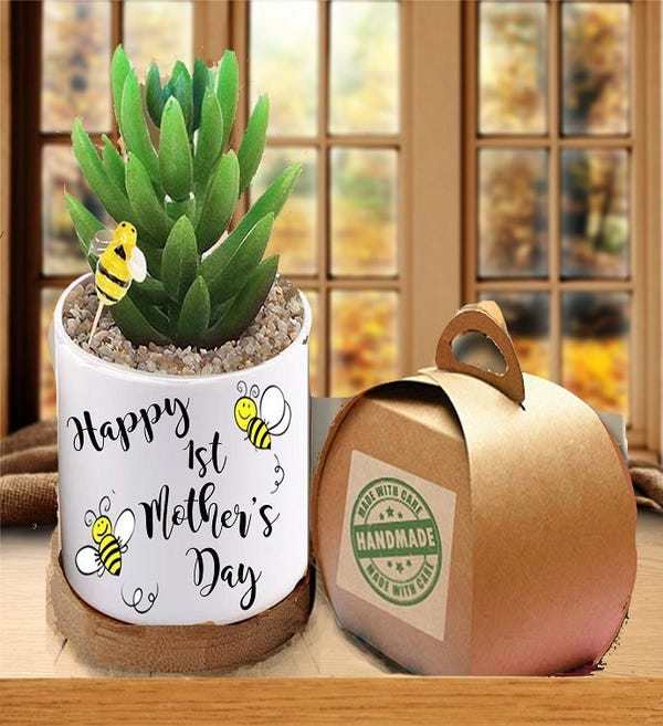 1st Mother's Day Succulent Gift