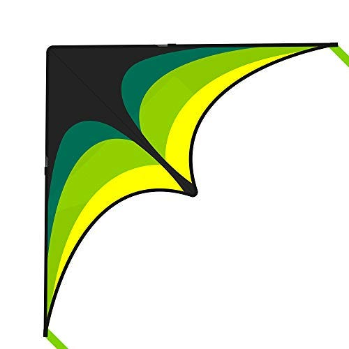 Mint's Colorful Life Delta Kite for Kids & Adults