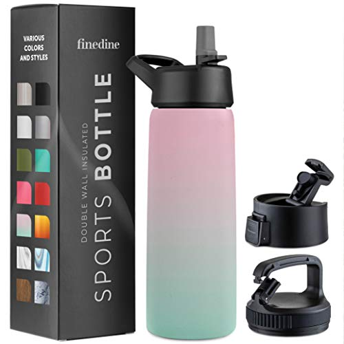 Triple-Insulated Stainless Steel Water Bottle with Straw Lid