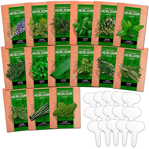 15 Culinary Herb Seed Vault - Heirloom and Non GMO