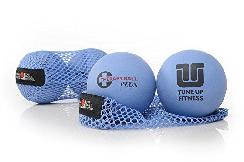 Tune Up Fitness – Therapy Ball PLUS Pair in Tote