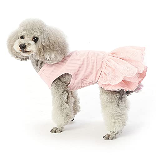 Pink Lace Dress Summer