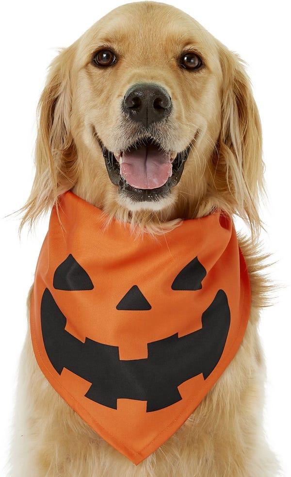 Jack O' Lantern Pumpkin Bandana